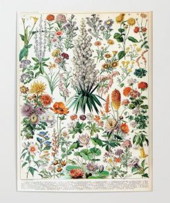 WallArt Posters Adolphe Millot - Fleurs B - French vintage poster Poster